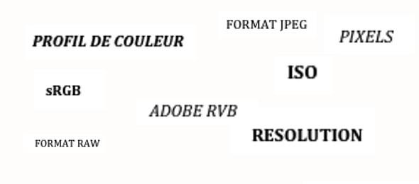 external image top-vocs-bases-590x260.jpg