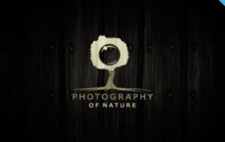 Top 100 - Logos de photographes
