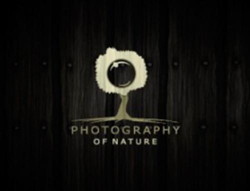 Top 100 : Logos photo