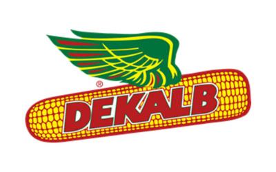 24 logos qui nous donne des ailes !