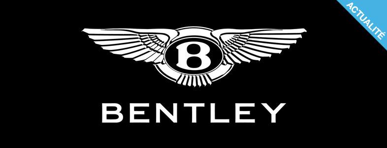 INSPIRATION - 24 logos qui nous donne des ailes !